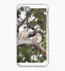 Peaceful Doves  (1243) iPhone Case/Skin
