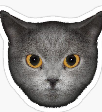 Le Chat (L) Sticker