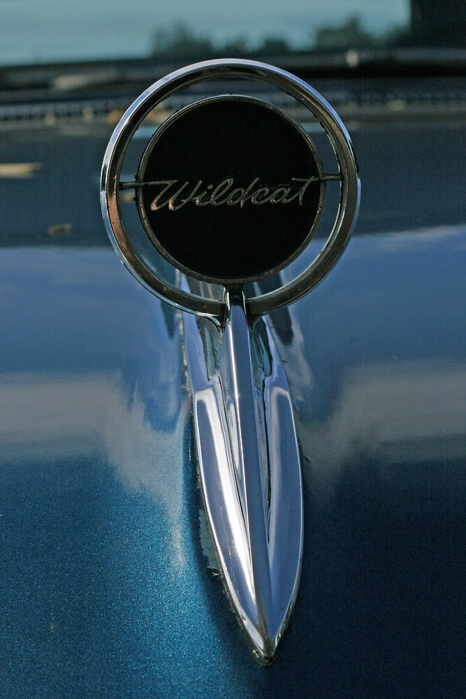 Buick Wildcat by Leigh Penfold