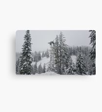Snowy Day in the Mountains  Canvas Print