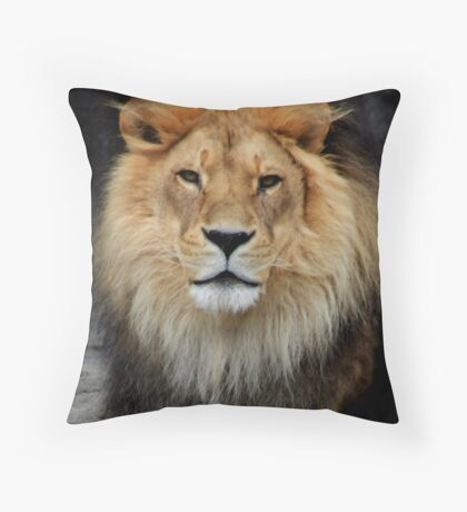 Wise Beyond His Years Throw Pillow