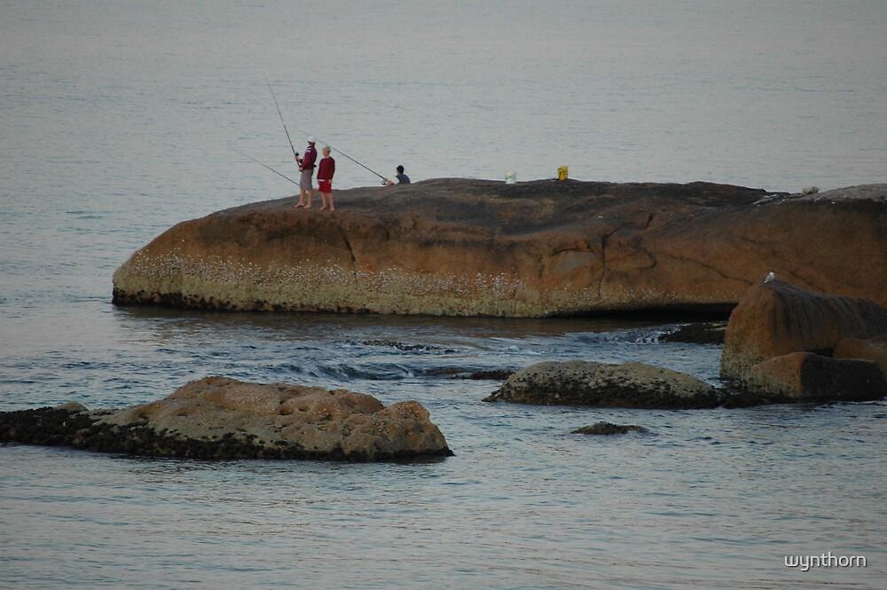 rock fishing by wynthorn