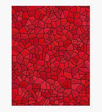 Dragon Skin- Red Stone Photographic Print