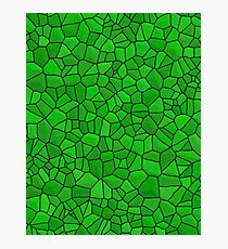 Dragon Skin- Green Stone Photographic Print