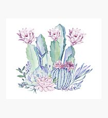 Trendy Cactus Pink and Mint Green Desert Cacti Design Photographic Print