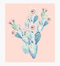 Pretty Cactus Pink and Mint Green Desert Cacti Home Decor Photographic Print