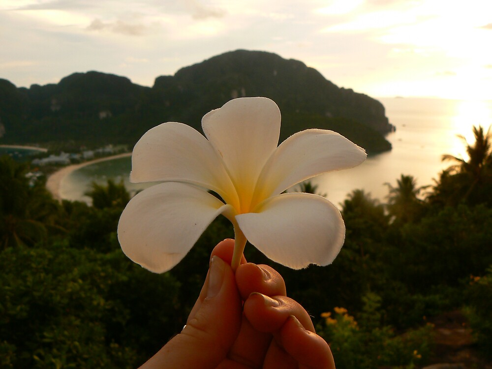 Phi Phi Viewpoint by adelethomas