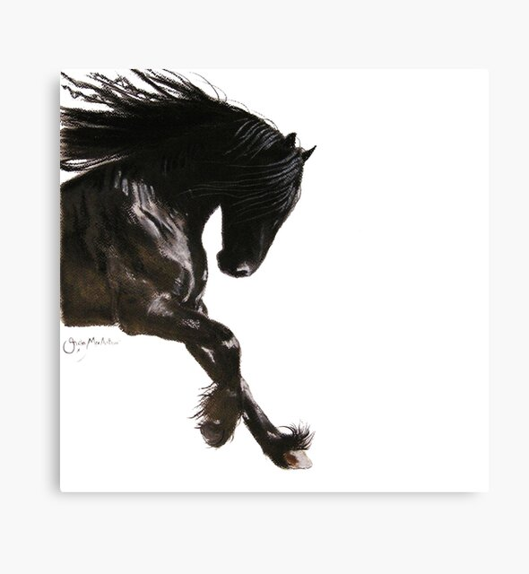 Horse PRiNT BLaCK FRieSiaN ' COOL DANCER ' by Shirley MacArthur by Shirley MacArthur