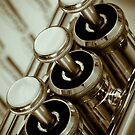 Trumpet by illustrateme