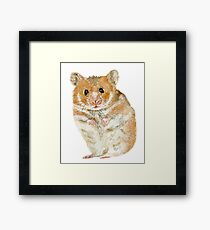 Little Furry Hamster Pet Framed Print