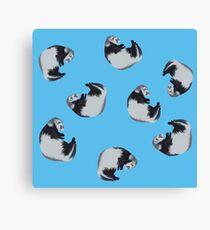 Ferrets Canvas Print