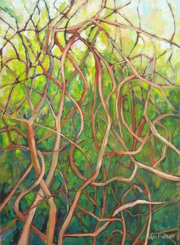 Tangle by Lyn Fabian