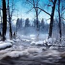 « Cold winter days.. » par Päivi  Valkonen