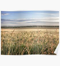 """""""Wheat Field by the Sea"""" Poster"""