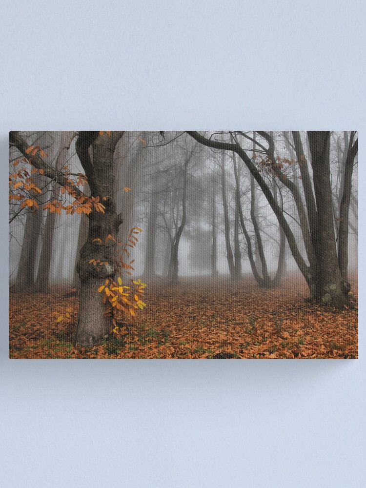 Alternate view of The last of the autumn leaves Canvas Print