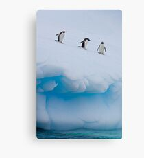 Penguins, Ice & Water Canvas Print