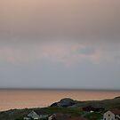 copper sea by delfinada