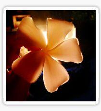 Backlit Plumeria Sticker