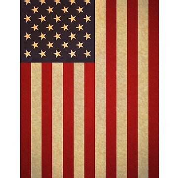 American Flag iPhone and Tablet case by ItsNextYear