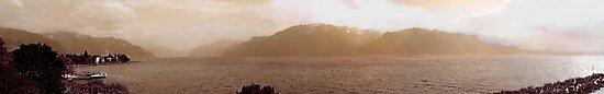 Vevey Panorama by John Douglas