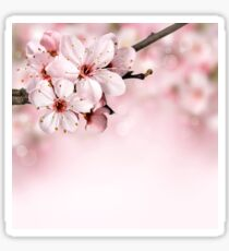 BLOOMING BLOSSOMS Sticker