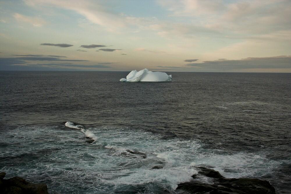 Iceberg At Dusk by JaneTara Oliver