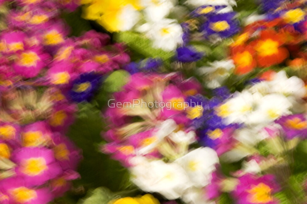 BRUSHLESS FLOWER PAINTING by GemPhotography