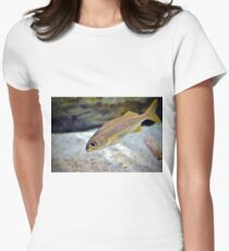 Bigeye Snapper T-Shirt