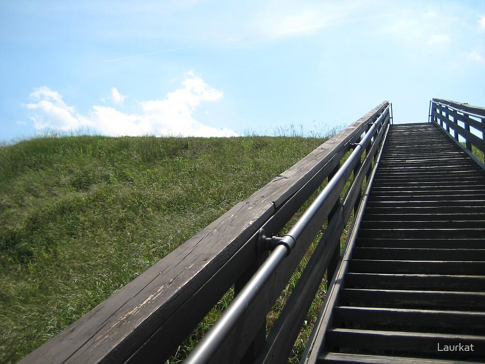 etowah stairway ii by Laurkat