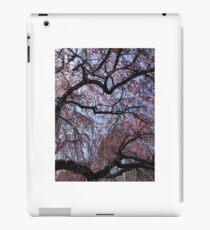 Cherry Blossom Dreams iPad Case/Skin