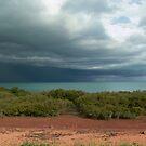 Roebuck Storm Brewing by Bronwyn Houston