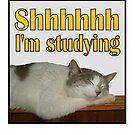 Shhhhhh I'm Studying by SlightlySkewy