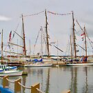 Tall Ships at Charlottetown Harbour, PEI Canada by Shulie1