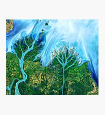 Flowing Waters Gulf of Mexico Photographic Print