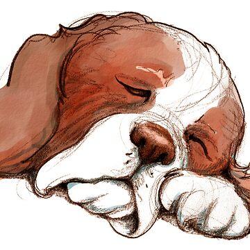 Sleeping Springer by DebStuckey