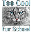 Too Cool For School by SlightlySkewy