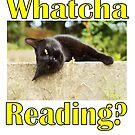 Whatcha Reading? by SlightlySkewy