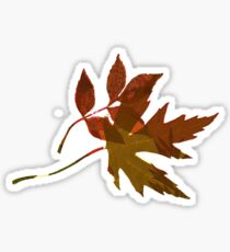 Lots of Lovely Leaves 3 Sticker