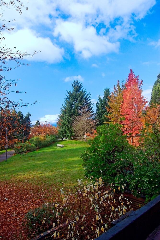 Autumn in Vancouver BC, Canada 44 by Priscilla Turner
