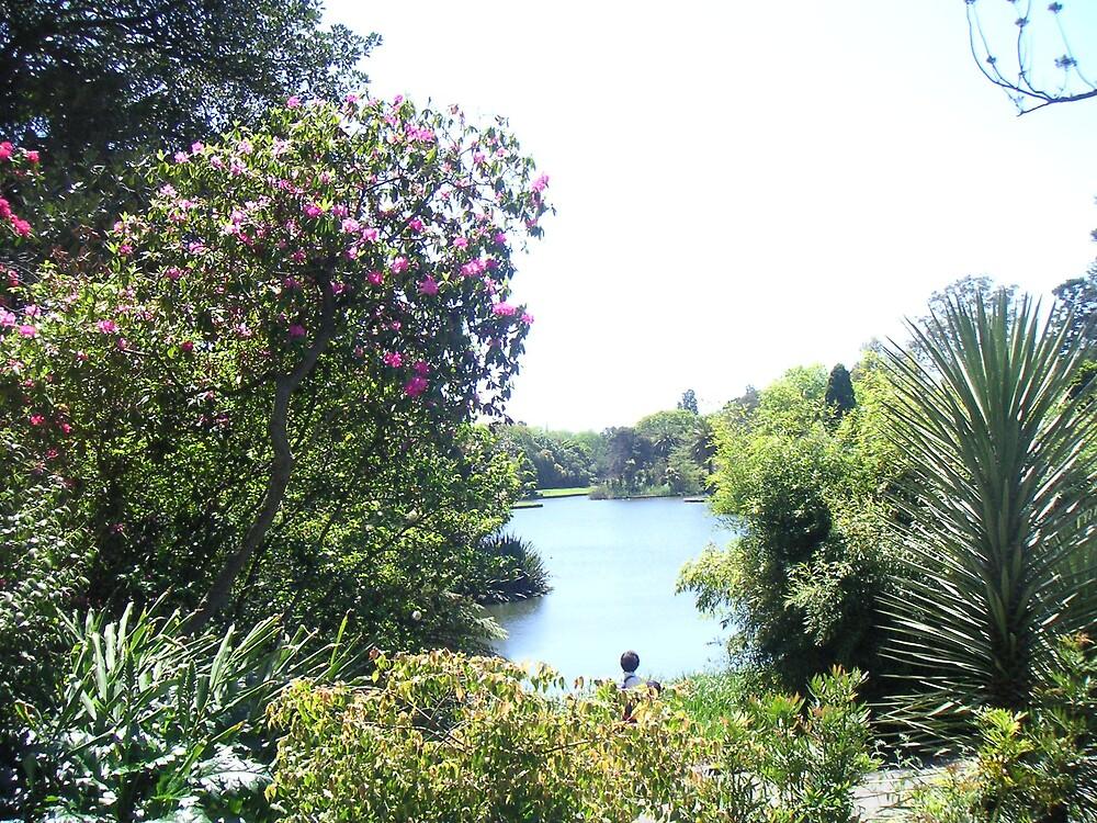 Garden's Lake by Ian McKenzie