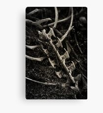 Death & Destruction Canvas Print