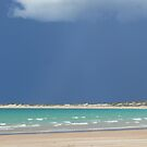 Green Sea by Bronwyn Houston
