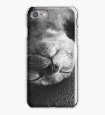 Sunday nap iPhone Case/Skin