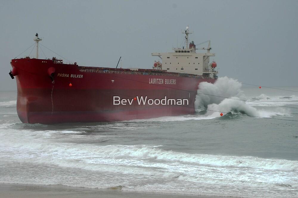 pasha bulker case study Marine pollution damage in australia: implementing the bunker oil  the grounding of the bulk carrier pasha bulker on nobbys  averted in this case,.