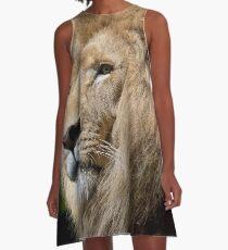 LION A-Line Dress
