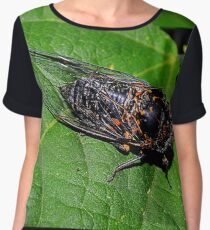 Napping on a Pole Bean Leaf Women's Chiffon Top