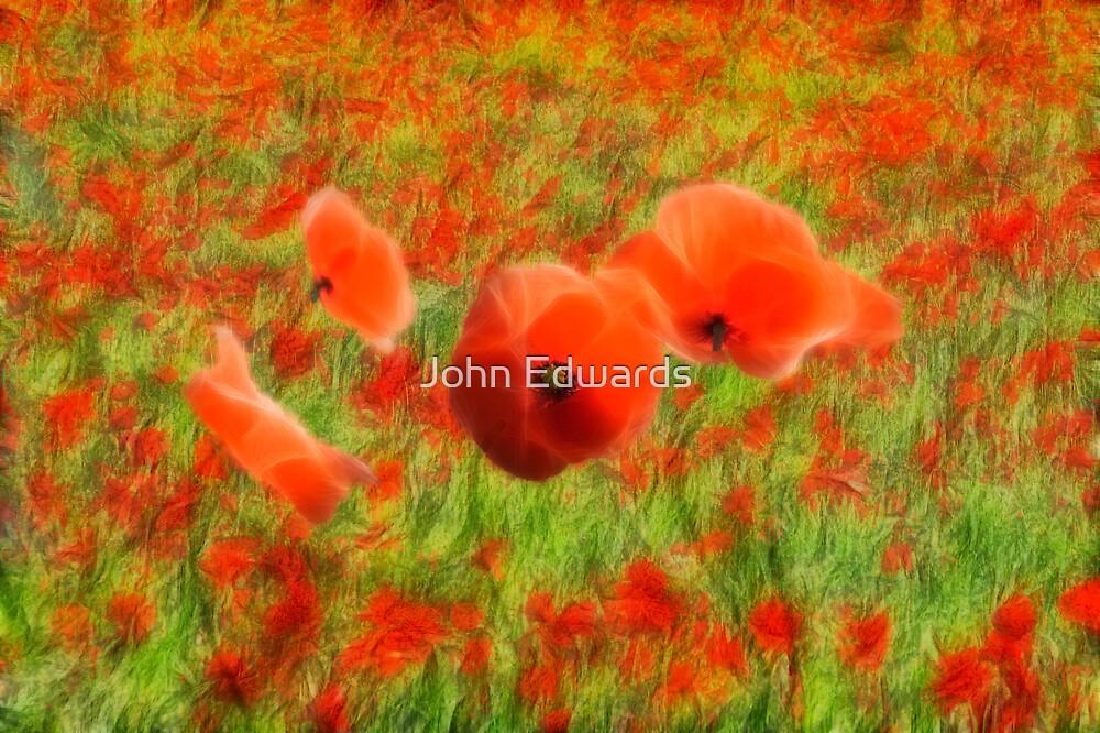 In Flanders Fields by John Edwards