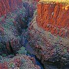 Knox Gorge by Harry Oldmeadow