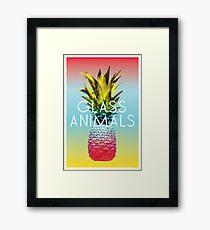 Glass Animals Tour Poster Framed Print