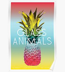 Glass Animals Tour Poster Poster